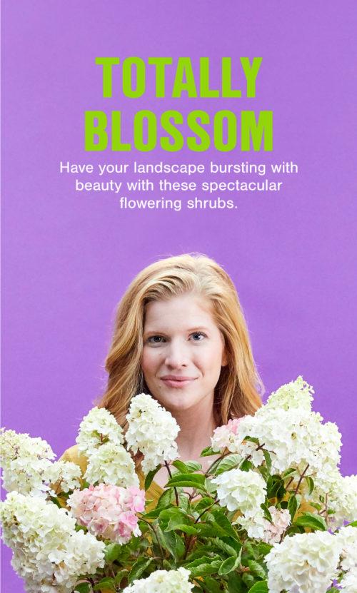 FE_Blossom_v1_640x1064