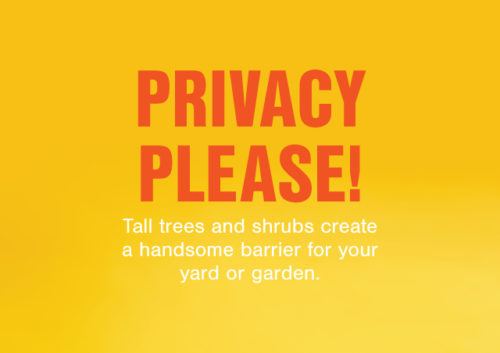 FE_Privacy_v2_640x452