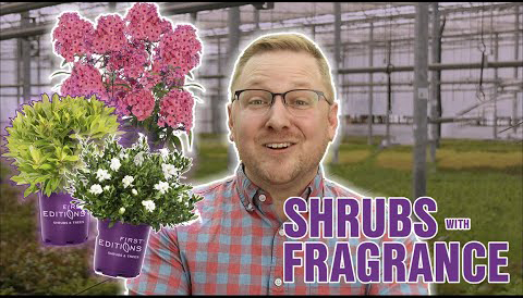 PlantswithFragrance